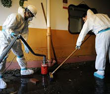flooded basement restoration services mold cleanup flood cleanup
